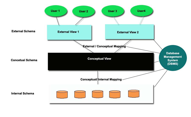 detailed three layered architecture of DBMS